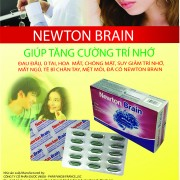 to NEWTON BRAIN