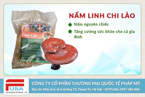 Nấm linh chi Lào