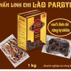 HÔP LINH CHI